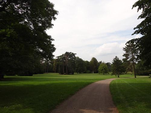 Promenade dans le bois Préau