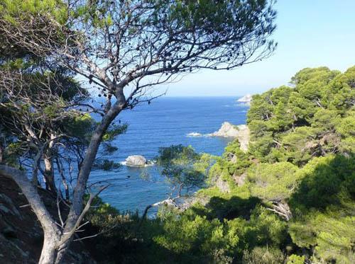Randonnée au Cap Sicié